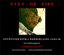 Eyes of Fire cover