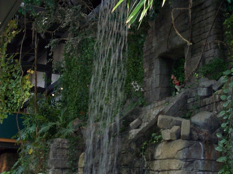 A 25 ft tall makeshift waterfall in the Cleveland Metroparks Zoo's RainForest. 100_0426 by Bowl is Forever, CC BY-NC-ND 2.0