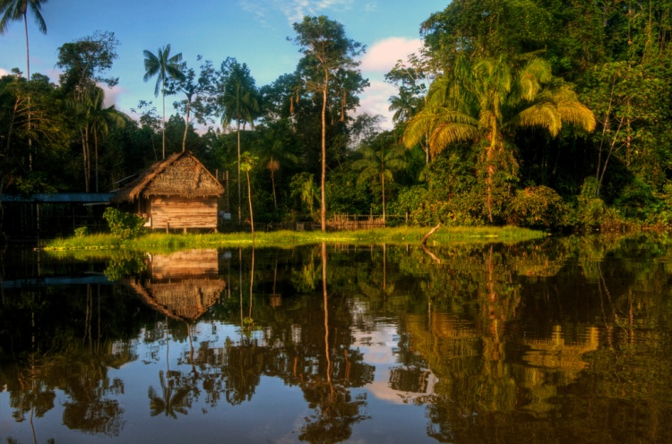 Amazon River Reflections by Mariusz Kluzniak. CC BY-NC-ND 2.0