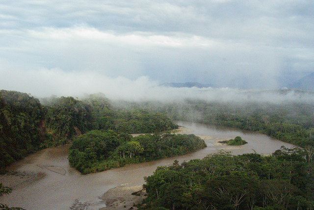 Ecuadorian Amazon by Dallas Krentzel. CC BY 2.0