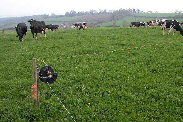 If left unaddressed, harmful inter group dynamics may limit the effectiveness of technical solutions to conservation conflicts. Strip Grazing at Merrivale Farm by Philip Halling. CC BY-SA 2.0