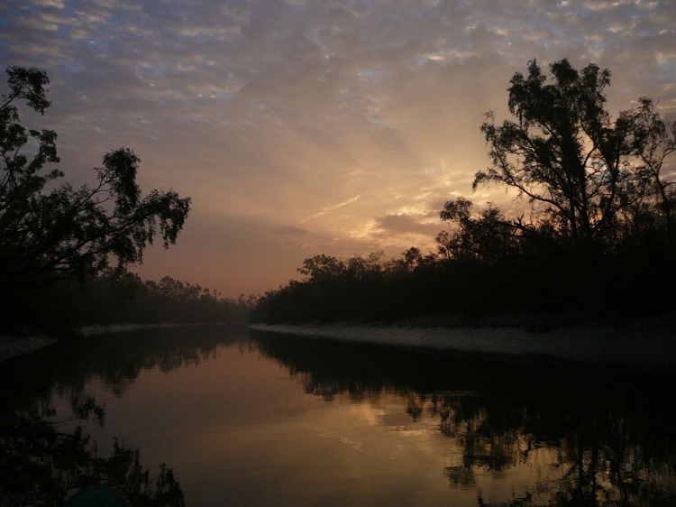Though beautiful, more people are killed by tigers in the Sundarbans than anywhere else. Sundarbans by lepetitNicolas. CC BY-NC-SA 2.0