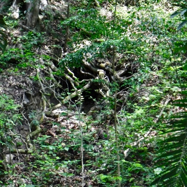 The collapsed trench that still contains the remains of the looter who perished there.