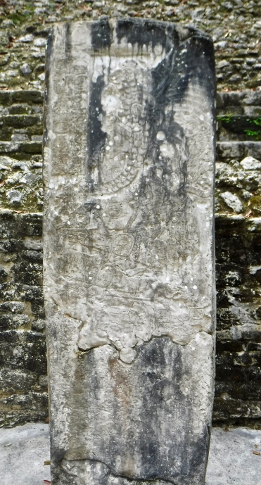 A replica of an expertly-carved stela that was found at Lamanai.