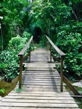 Crossing a wooden bridge.