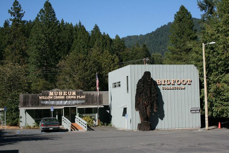 A shot of the Bigfoot Museum in Willow Creek, California.
