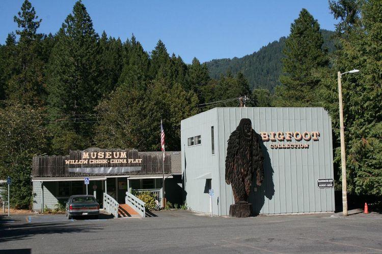 A shot of the Bigfoot Museum in Willow Creek, California.