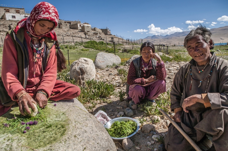 A group of women making spices in the Ladakh region of India.