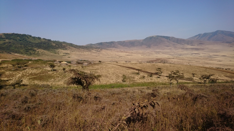 A shot of a plain in Tanzania.