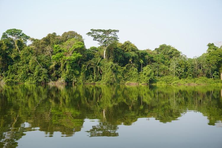 A jungle lake in Bolivia.