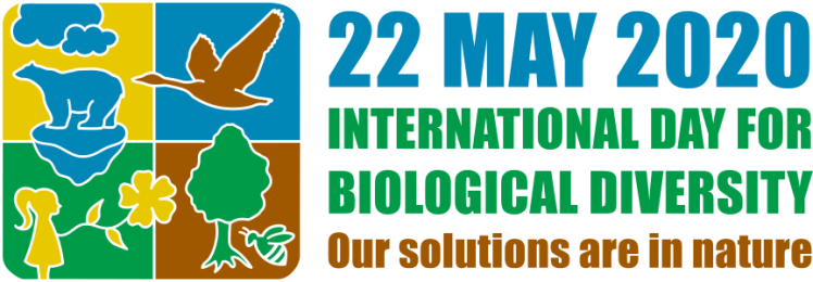 The logo for the 2020 International Biodiversity Day