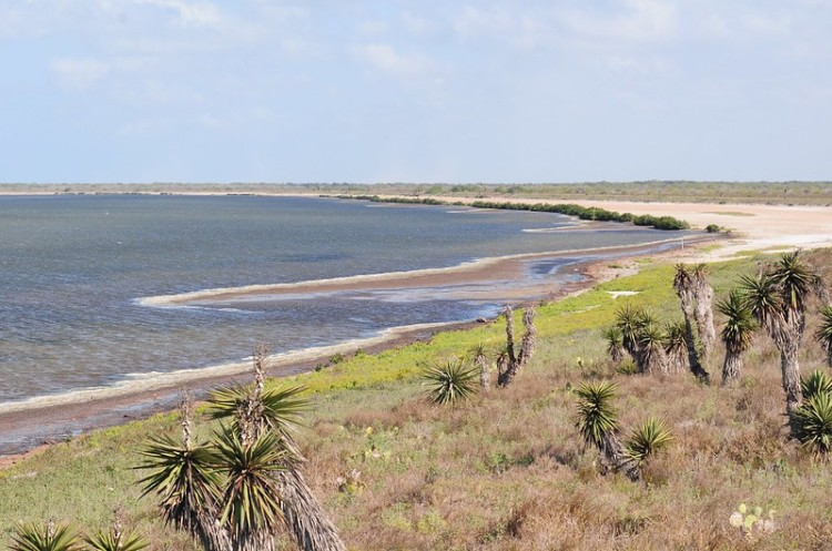 The coastline at Laguna Atascosa National Wildlife Refuge
